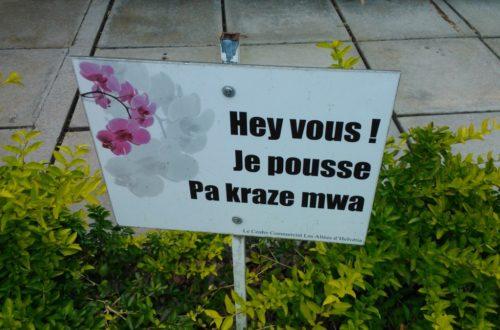 Article : Ile Maurice: parol kreol