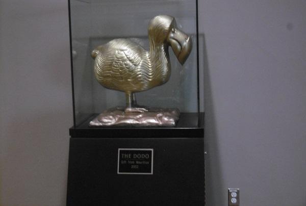 Comment décrire la joie que je ressens à chaque fois que je passe devant ce dodo aux Nations Unies!
