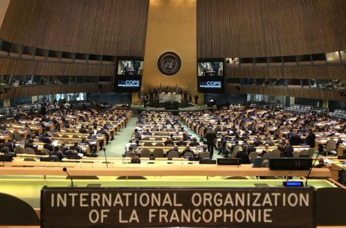 Article : Francophonie: en ce 20 mars 2020…