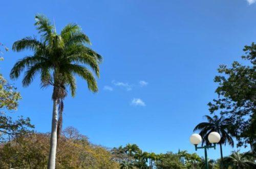 Article : Ile Maurice: les Salines au soleil